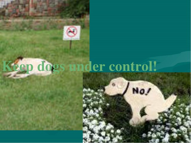 Keep dogs under control!