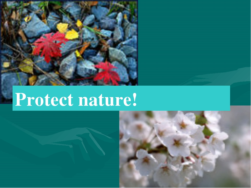 Protect nature!
