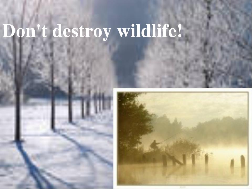 Don't destroy wildlife!
