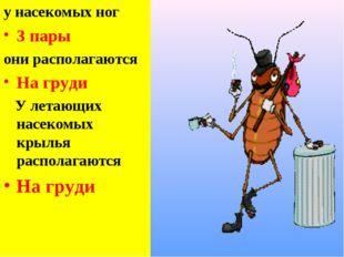 у насекомых ног 3 пары они располагаются На груди У летающих насекомых крылья