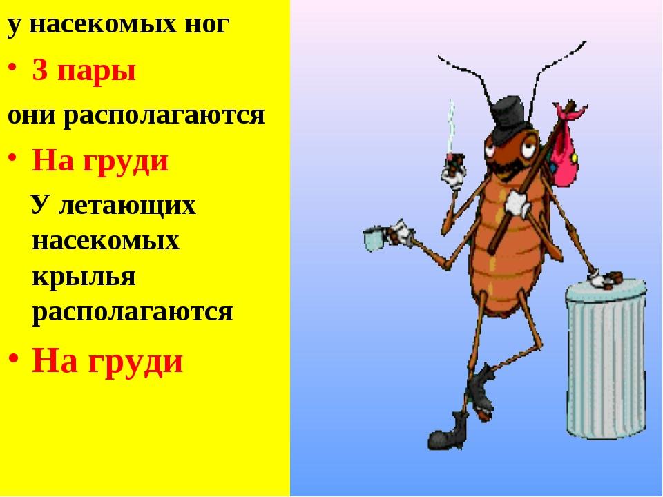у насекомых ног 3 пары они располагаются На груди У летающих насекомых крылья...