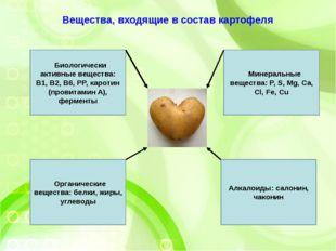 Вещества, входящие в состав картофеля Биологически активные вещества: В1, В2,