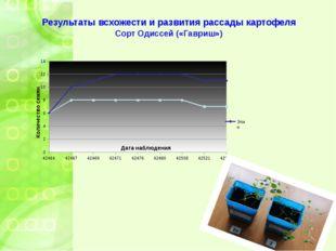 Результаты всхожести и развития рассады картофеля Сорт Одиссей («Гавриш»)