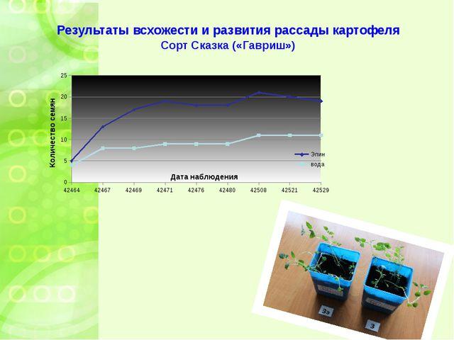 Результаты всхожести и развития рассады картофеля Сорт Сказка («Гавриш»)