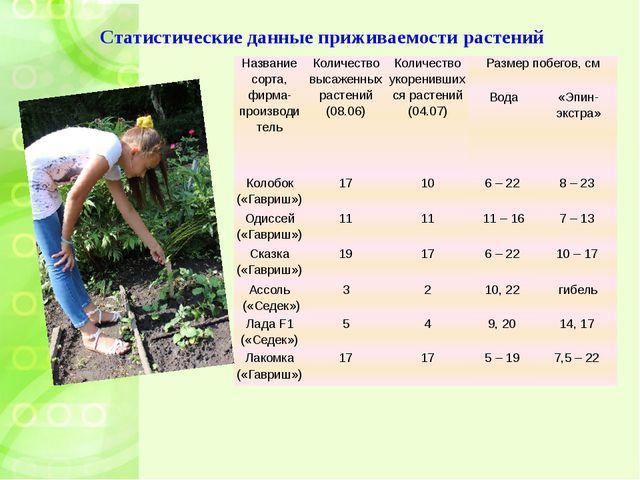 Статистические данные приживаемости растений Название сорта, фирма-производит...