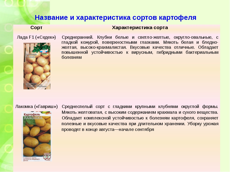 Название и характеристика сортов картофеля Сорт Характеристика сорта ЛадаF1(«...