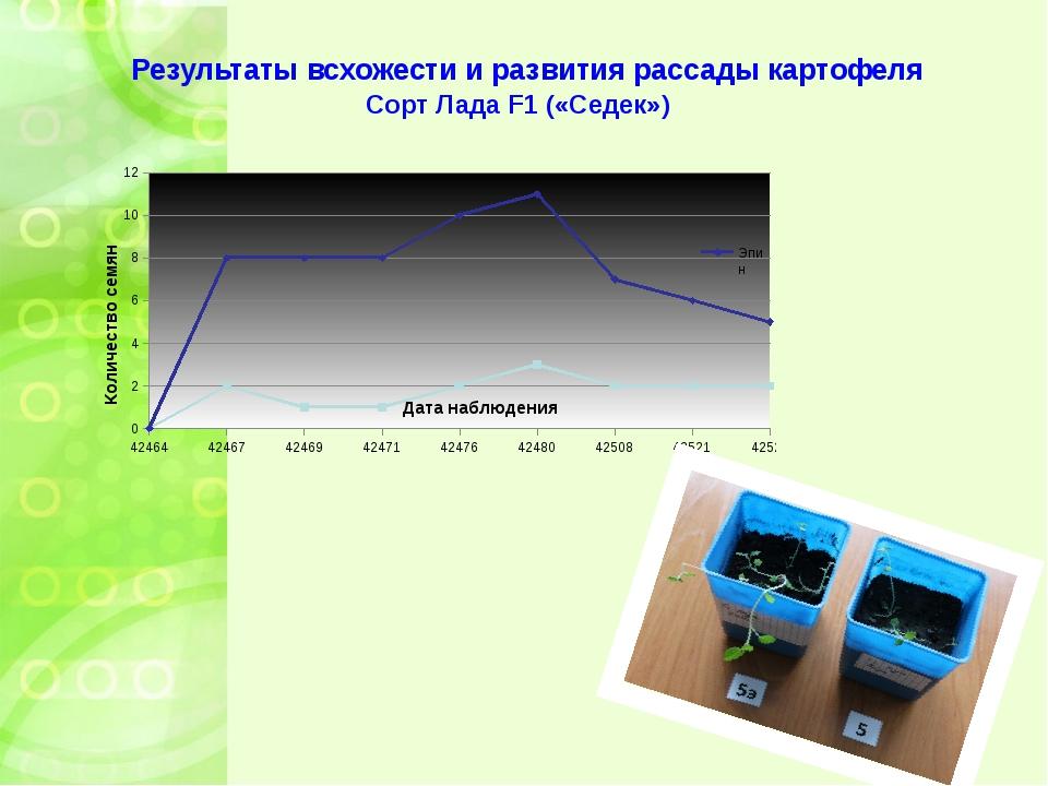 Результаты всхожести и развития рассады картофеля Сорт Лада F1 («Седек»)