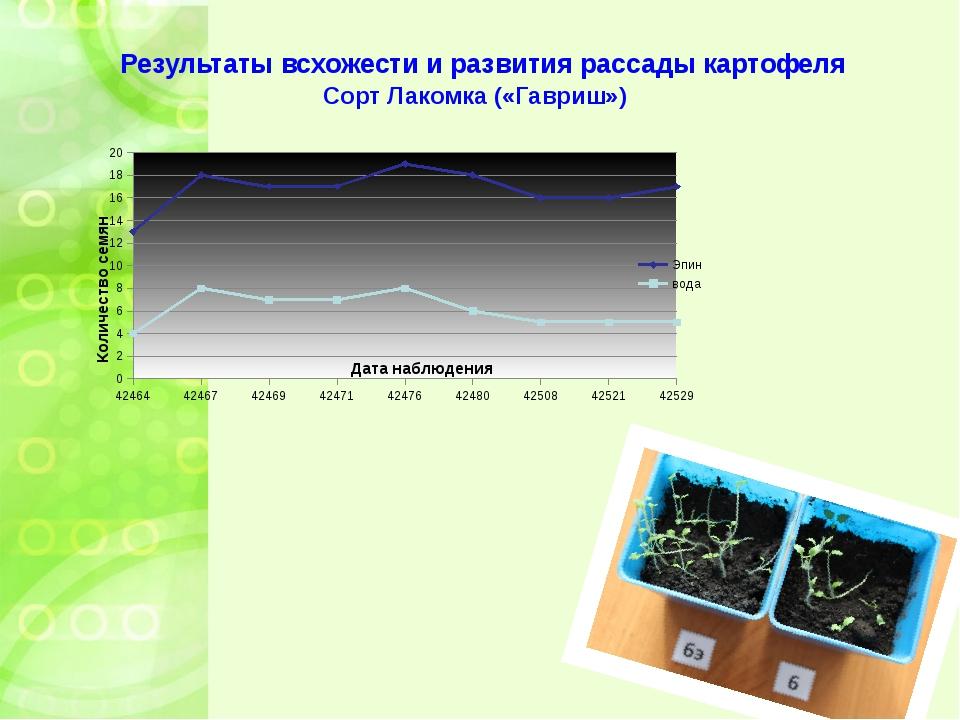 Результаты всхожести и развития рассады картофеля Сорт Лакомка («Гавриш»)