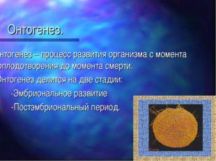 Онтогенез. Онтогенез – процесс развития организма с момента оплодотворения до