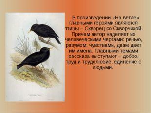 В произведении «На ветле» главными героями являются птицы – Скворец со Сквор