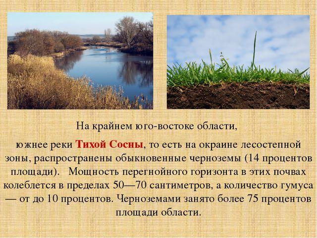 крайний юго восток белгородской области занимает зона