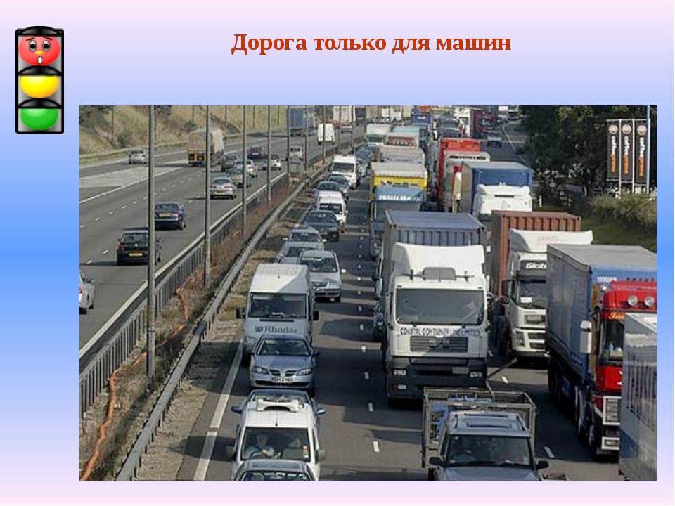 Дорога только для машин
