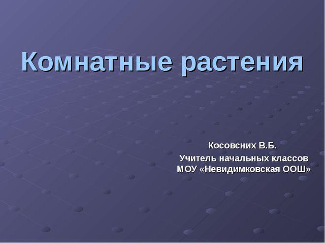 Комнатные растения Косовсних В.Б. Учитель начальных классов МОУ «Невидимковск...