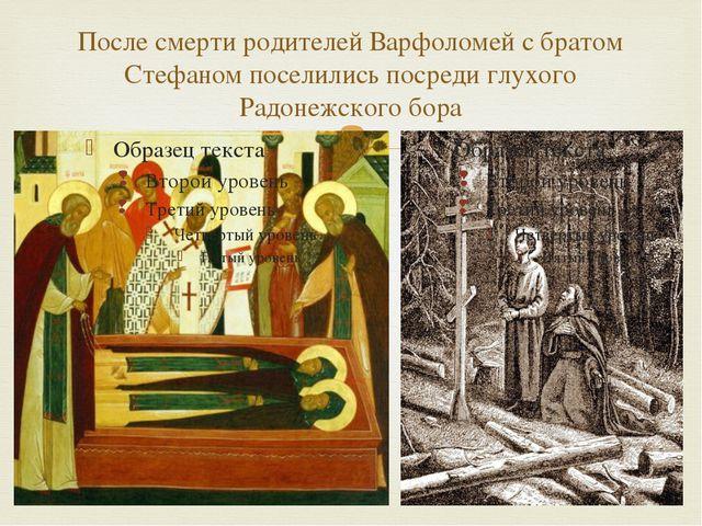После смерти родителей Варфоломей с братом Стефаном поселились посреди глухог...