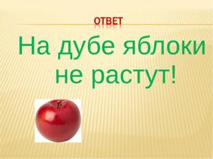 На дубе яблоки не растут!
