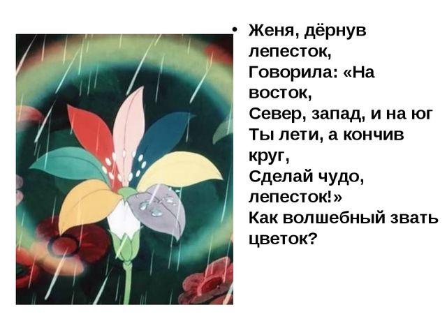 Женя, дёрнув лепесток, Говорила: «На восток, Север, запад, и на юг Ты лети, а...