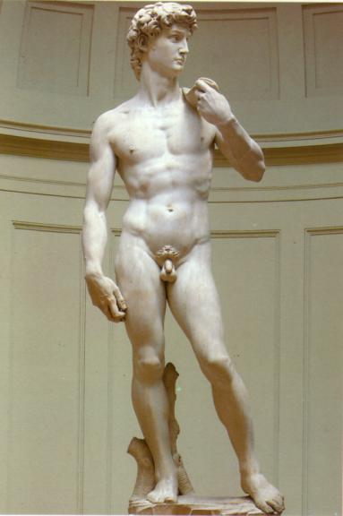 Michelangelo David Circumcised