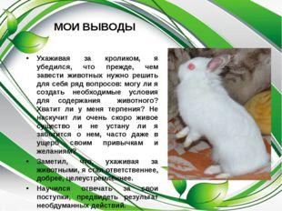 МОИ ВЫВОДЫ Ухаживая за кроликом, я убедился, что прежде, чем завести животных