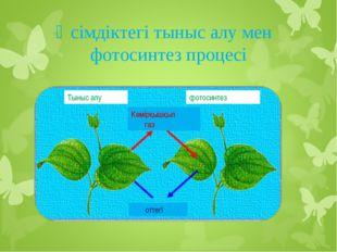 Өсімдіктегі тыныс алу мен фотосинтез процесі Тыныс алу Көмірқышқыл газ оттегі