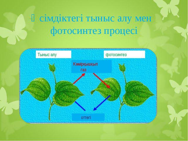 Өсімдіктегі тыныс алу мен фотосинтез процесі Тыныс алу Көмірқышқыл газ оттегі...
