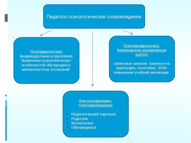 Педагого-психологическое сопровождение Психодиагностика (индивидуальная и гру...