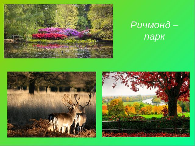 Ричмонд – парк