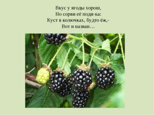 Вкус у ягоды хорош, Но сорви её поди-ка: Куст в колючках, будто ёж,- Вот и на