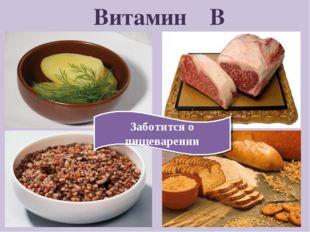 Витамин В Заботится о пищеварении