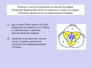 Важным этапом необратимой эволюции биосферы Владимир Вернадский считал ее пер