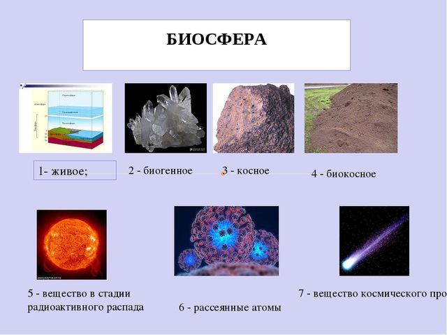 1- живое; 2 - биогенное 3 - косное 4 - биокосное 5 - вещество в стадии радиоа...