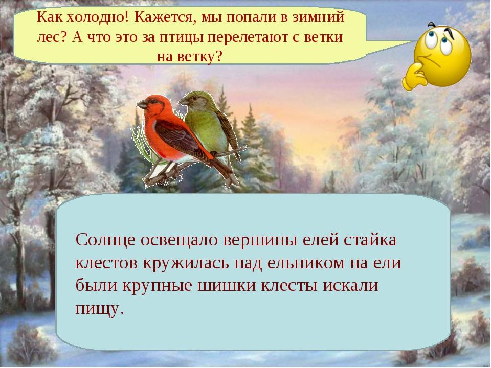 Как холодно! Кажется, мы попали в зимний лес? А что это за птицы перелетают с...