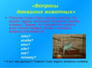 «Вопросы домашних животных» Попугаю Гоше стало скучно в клетке. Он решил зада