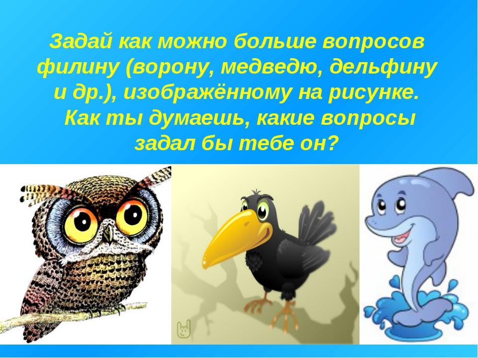 Задай как можно больше вопросов филину (ворону, медведю, дельфину и др.), изо...