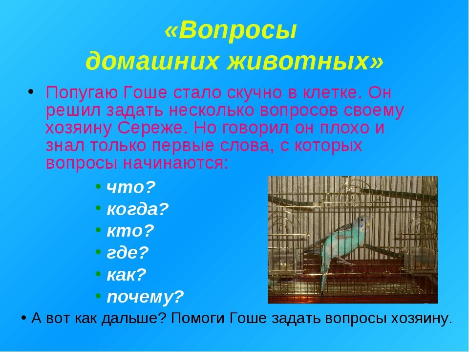 «Вопросы домашних животных» Попугаю Гоше стало скучно в клетке. Он решил зада...