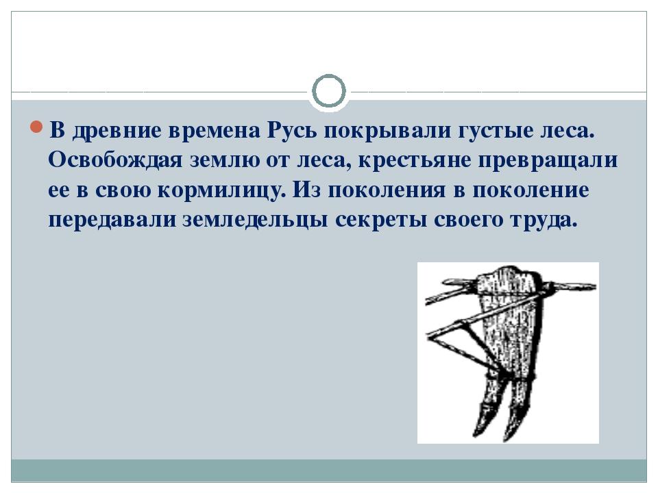 В древние времена Русь покрывали густые леса. Освобождая землю от леса, крест...
