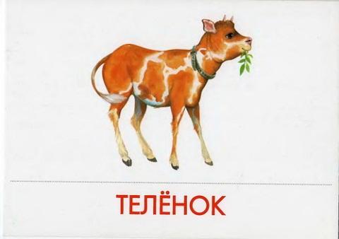 http://img-fotki.yandex.ru/get/5114/87196971.22/0_78f6a_f4941ca5_L.jpg