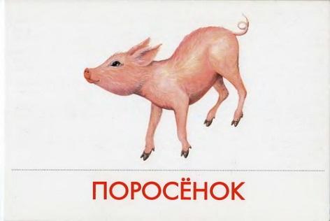 http://img-fotki.yandex.ru/get/5114/87196971.23/0_78f72_52628d2c_L.jpg