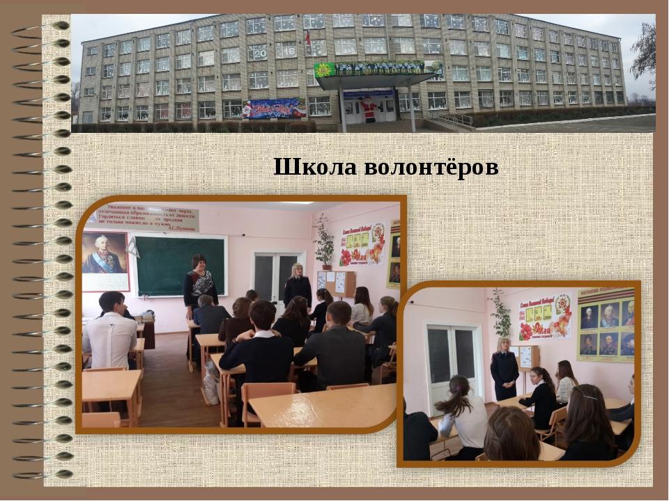 Школа волонтёров