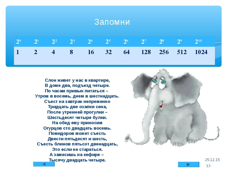 Слон живет у нас в квартире, В доме два, подъезд четыре. По часам привык пит...