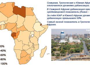 Северная, Тропическая и Южная Африка отличаются уровнями урбанизации. В Север