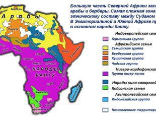 Большую часть Северной Африки заселяют арабы и берберы. Самая сложная зона по