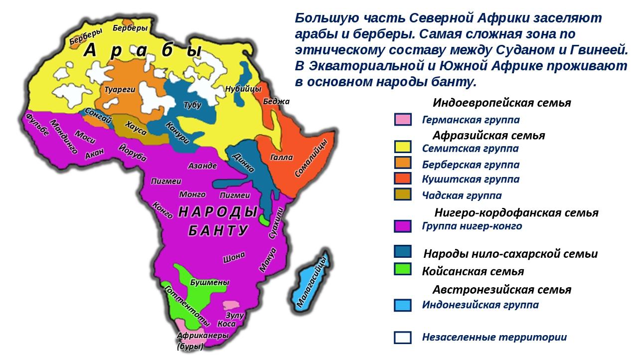 Большую часть Северной Африки заселяют арабы и берберы. Самая сложная зона по...
