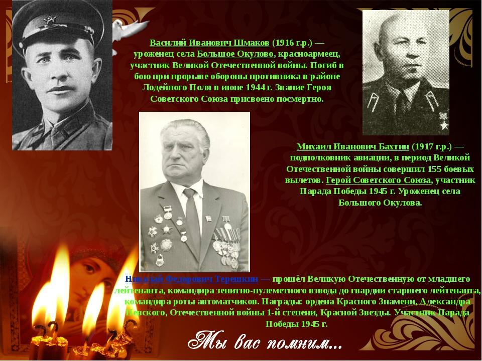 Николай Федорович Терешкин— прошёл Великую Отечественную от младшего лейтен...