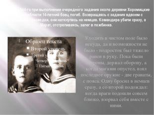 А в мае 1944-го при выполнении очередного задания около деревни Хоромицкие Ми
