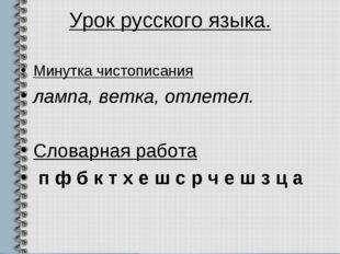 Урок русского языка. Минутка чистописания лампа, ветка, отлетел. Словарная ра