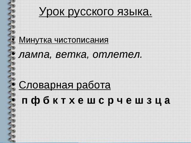 Урок русского языка. Минутка чистописания лампа, ветка, отлетел. Словарная ра...