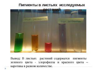 Вывод: В листьях растений содержатся пигменты зеленого цвета - хлорофилла и к