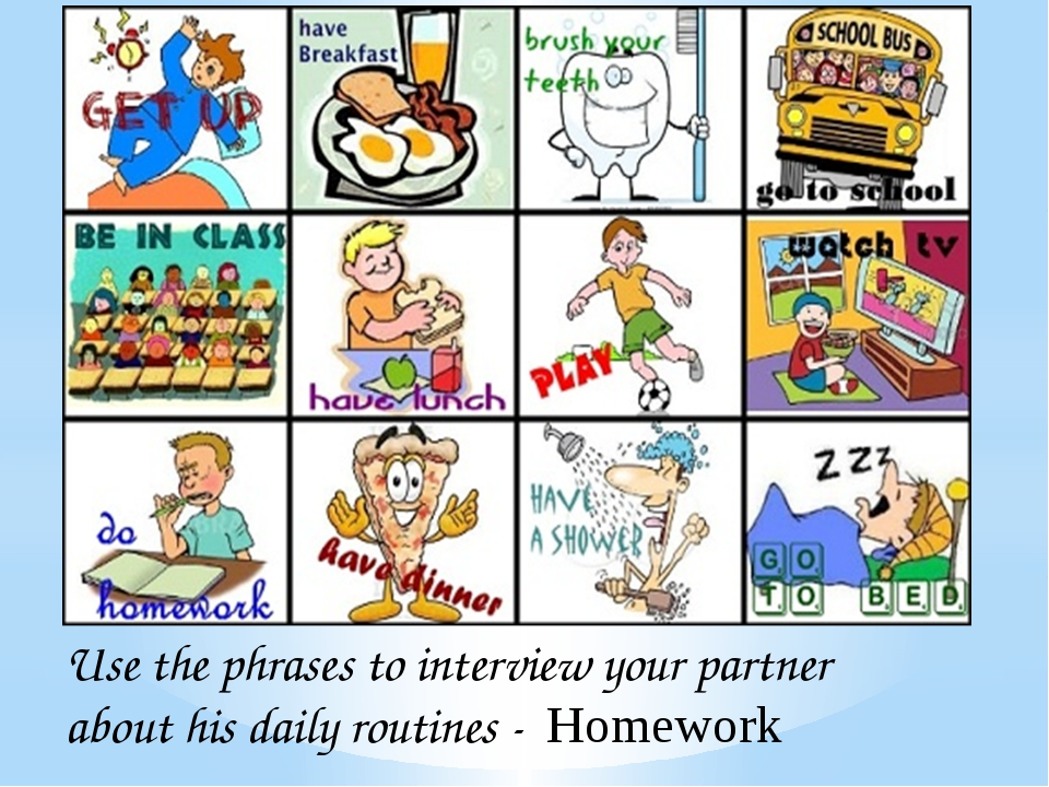 Use the phrases to interview your partner about his daily routines - Homework