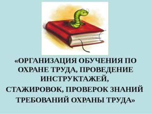«ОРГАНИЗАЦИЯ ОБУЧЕНИЯ ПО ОХРАНЕ ТРУДА, ПРОВЕДЕНИЕ ИНСТРУКТАЖЕЙ,  СТАЖИРОВОК,