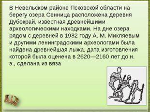 В Невельском районе Псковской области на берегу озера Сенница расположена дер